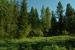 rivers crossing mccall idaho real estate land for sale homesites purchase